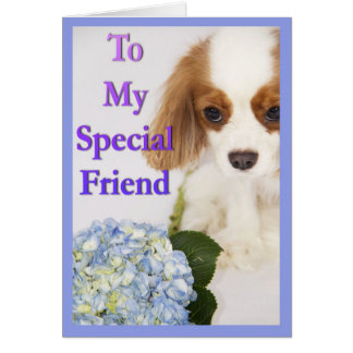 To My Special Friend Cavalier King Charles Spaniel Card