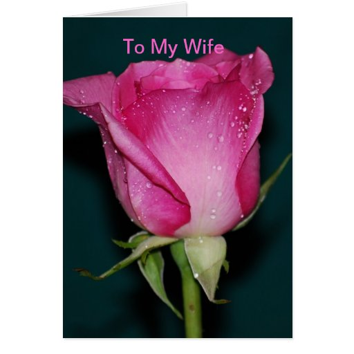 To My Wife Greeting Card