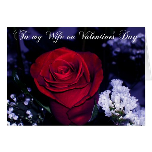 To my Wife on Valentine's Day-Red Rose Romance Card