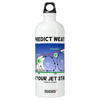 To Predict Weather Know Your Jet Streams Aluminum Water Bottle