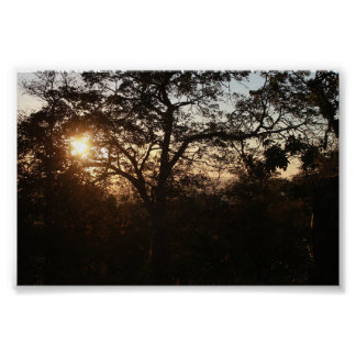 To put of the Sun in the open pasture Poster