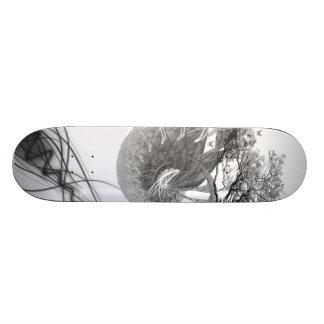 to skater wonders skateboard deck