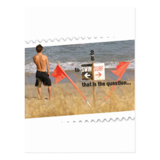 To surf or to swim - that is the question postcard