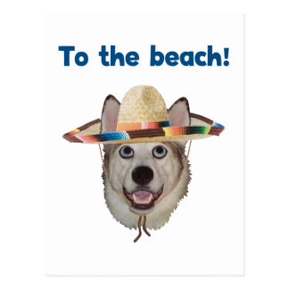 To The Beach Dog Postcard