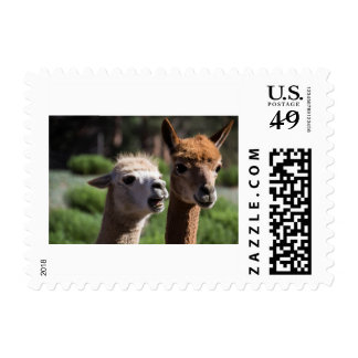 To the Moon, Alice Postage