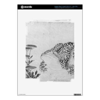 Toad and Flowers - Japanese (Edo Period) iPad 3 Decals