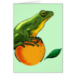 Toad and Orange Card