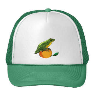 Toad and Orange Mesh Hat