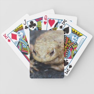 Toad Bicycle Playing Cards