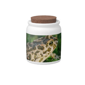 Toad Candy Jar