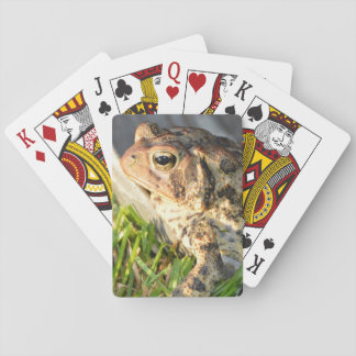 Toad Card Deck