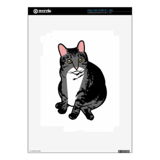 Toad Cat iPad 2 Skins