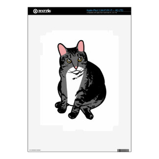 Toad Cat Skin For iPad 3