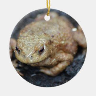 Toad Ceramic Ornament
