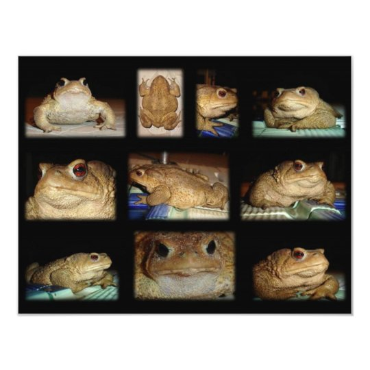 Toad Collage Card