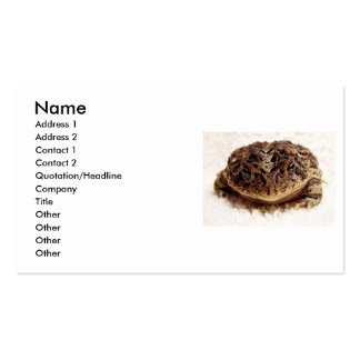 Toad frog close up photograph on white background business card