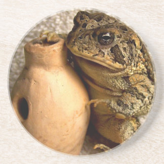 Toad frog holding miniature udu photograph coasters