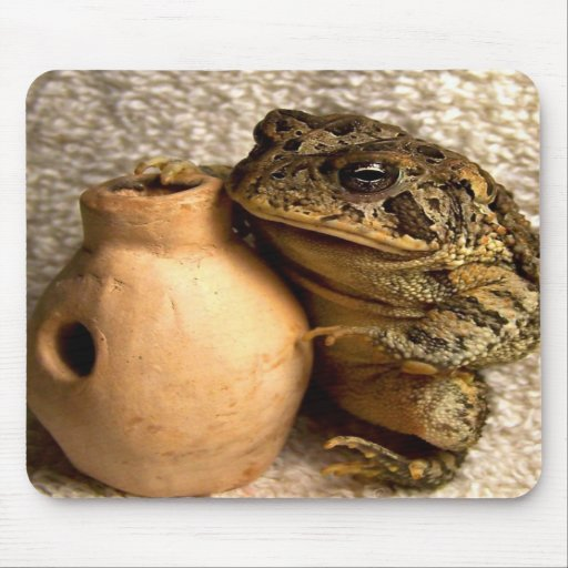 Toad frog holding miniature udu photograph mouse pad
