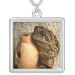 Toad frog holding miniature udu photograph necklace