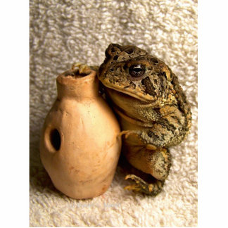 Toad frog holding miniature udu photograph photo cutouts