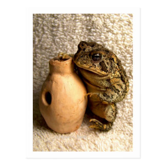Toad frog holding miniature udu photograph postcard