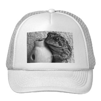 Toad frog holding udu percussion photograph mesh hats