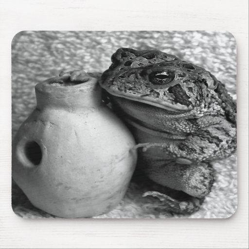 Toad frog holding udu percussion photograph mousepads