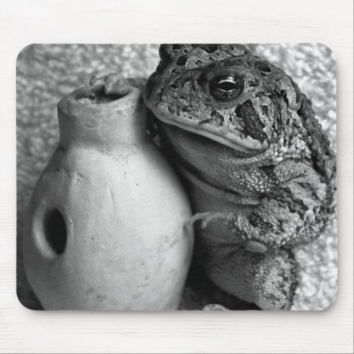 Toad frog holding udu percussion photograph mouse pads