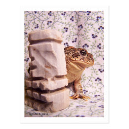 Toad frog marble chess piece prop flowered back postcard