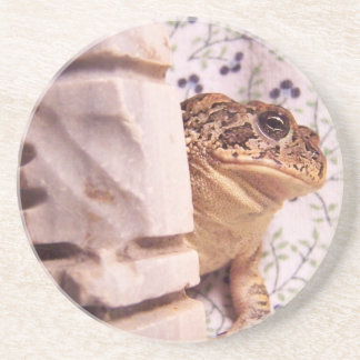 Toad frog marble chess piece prop flowered back sandstone coaster