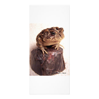 Toad frog on hand hammered copper cup photo rack card