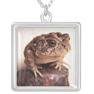 Toad frog on hand hammered copper cup photo silver plated necklace