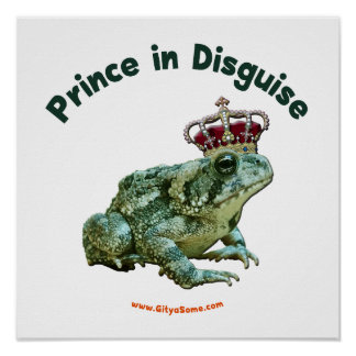 Toad Frog Prince in Disguise Poster