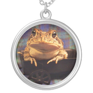 Toad frog sitting in black wagon photograph round pendant necklace