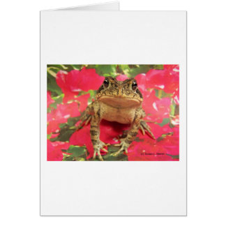 Toad frog standing up against bougainvillea back card