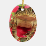 Toad frog standing up against bougainvillea back christmas ornament