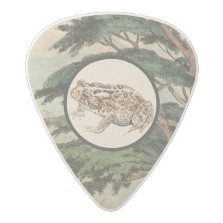 Toad In Natural Habitat Illustration Acetal Guitar Pick