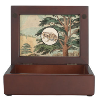 Toad In Natural Habitat Illustration Memory Boxes