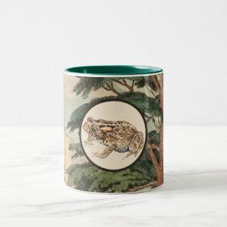 Toad In Natural Habitat Illustration Mugs