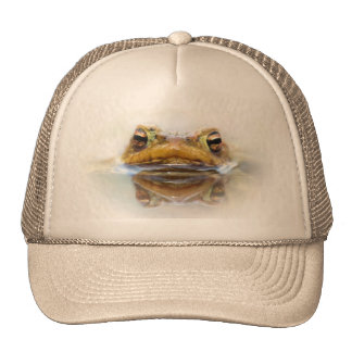 Toad in water hat
