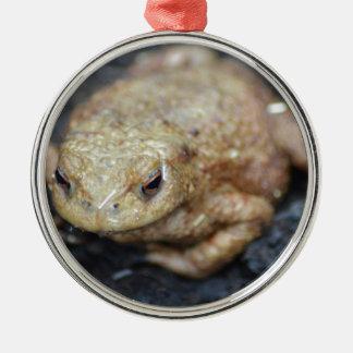 Toad Metal Ornament