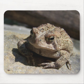 Toad Mouse Pad