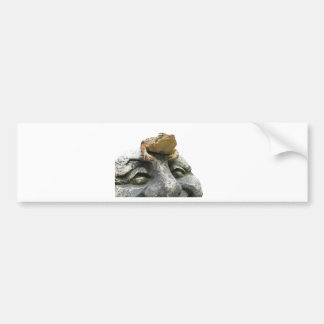 Toad on Garden Happy Face Rock Bumper Sticker