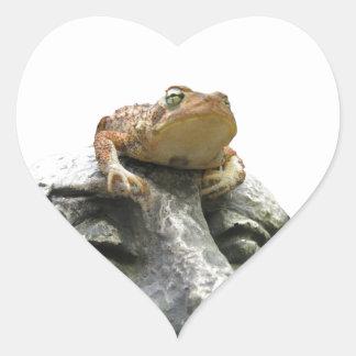 Toad on Garden Happy Face Rock Heart Sticker