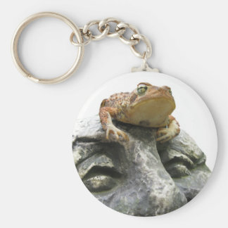 Toad on Garden Happy Face Rock Keychains