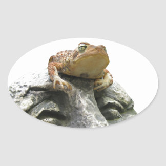 Toad on Garden Happy Face Rock Oval Sticker