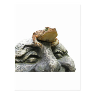 Toad on Garden Happy Face Rock Post Cards