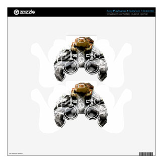 Toad on Laughing Face Rock Skin For PS3 Controller