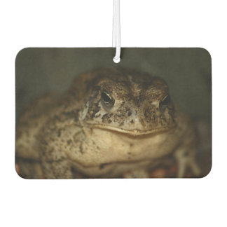 Toad Photo Car Air Freshener