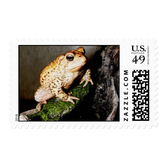 Toad Postage